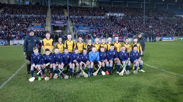 Hurling Exhibition